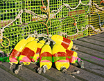 Close-up View of Yellow and Red Lobster Buoys and Green Lobster Traps on Pier, Criehaven Harbor, Ragged Island