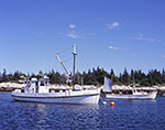 Close-up of Lobster Boats in Matinicus Harbor, Matinicus Island