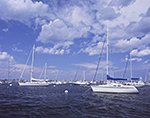 Sailboats in Scituate Harbor under Cumulus Clouds and Blue Skies, South Shore