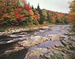 Deerfield River and Fall Woodlands, Green Mountain National Forest