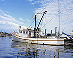 Old Wooden Fishing Trawler (Joanne Marie) in Montauk Harbor, Long Island, Village of Montauk, East Hampton, NY