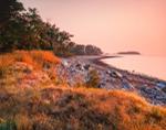 Early Morning Light on Shoreline of Sheffield Island, Stewart B. McKinney National Wildlife Refuge, Long Island Sound, Norwalk Islands, Norwalk, CT
