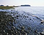 Rocks and Salt Marsh in Tidal Zone on Sheffield Island, Stewart B. McKinney National Wildlife Refuge, Long Island Sound, Norwalk Islands