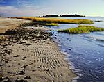 Tidal Zone on Shoreline of Shea Island, Long Island Sound,  Norwalk Islands