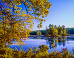 Harvard Pond in Late Summer, Petersham, MA