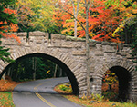 Fall Foliage and Carriage Road Bridge on Stanley Brook Road, Acadia National Park, Mt. Desert island