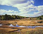 New Mill Meadow and Duck Brook in Fall under Blue Sky and Cumulus Clouds, Acadia National Park, Mt. Desert Island