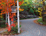 Red Maple and Sign at Intersection of Carriage Roads in Fall, Acadia National Park, Mt. Desert Island