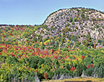 Closeup of Fall Foliage and The Beehive from atop Great Head, Acadia National Park, Mt. Desert Island
