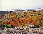 Colorful Fall Foliage on Cadillac Mountain, View out to Cranberry Islands, Acadia National Park, Mt. Desert Island