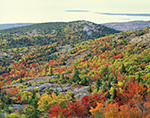 Fall Foliage on Cadillac Mountain with View of Eagle Crag, Acadia National Park, Mt. Desert Island