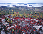 Overview of Porcupine Islands and Bar Harbor with Blueberry and Pink Granite in Foreground from Cadillac Mountain, Acadia National Park, Mt. Desert Island