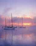Sailboats in Morning Ground Fog at Sunrise, Connecticut River