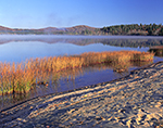 Early Light and Rushes at Lake Pleasant, Adirondack Mountains