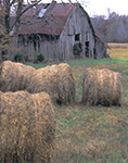 Hay Bales and Old Barn