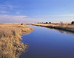 Dividing Creek and Salt Marsh, Turkey Point, Delaware Bay