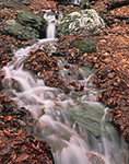 Seasonal Stream in Freshet, Taconic Range