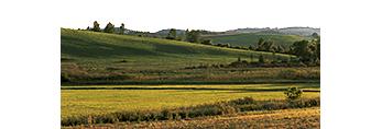 New York Farmland, White Creek, NY