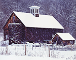 Old Brown Wooden Barns during Snowstorm