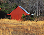 Southern-style Red Barn with Golden Grasses, Carroll County