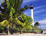Early Morning at Cape Florida Lighthouse and Palm Trees, Bill Baggs Cape Florida State Park