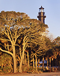 Early Morning Light on Trees and Hunting Island Lighthouse, Registered National Historic Landmark, Hunting Island State Park