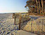 Fencing along Beach at Hunting Island State Park