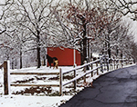 Horse and Pony with Red Barn and Fence after Rare Fresh Snowfall,  Faulkner County, AR