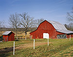 Old Red Barn with White Door, Faulkner County, Vilonia, AR