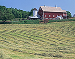 Newly Cut Hay Field and Red Barn, South Woodstock, VT