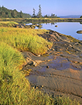 Early Morning Light on Rocks and Salt Marsh at the Southern End of The Basin, Vinalhaven Island, Vinalhaven, ME
