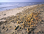 Beach at Gay Head Cliffs, Martha's Vineyard, Aquinnah, MA