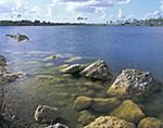 Pine Glades Lake, Everglades National Park, FL