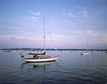 Boats in Rockland Harbor in Evening Light, West Penobscot Bay,  Rockland, ME