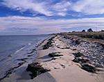 Shoreline, Great South Bay, Fire Island National Seashore, Long Island, NY