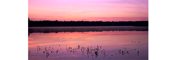Predawn at Lake Dennison, Birch Hill Wildlife Area, Winchendon, MA