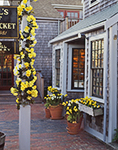 Gallery on Straight Wharf in Spring, Decorated for Daffodil Festival, Nantucket Island