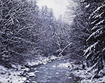 Cold River in Winter, Mohawk Trail State Forest, Berkshire Mountains