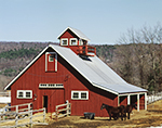 Red Horse Barn with Cupola, Balcony and Horses in Late Winter