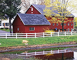 Red Barn and White Fence Reflecting in Small Pond with Forsythia and Maple Tree in Spring