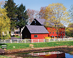 Red Barn and White Fence Reflecting in Small Pond with Forsythia, Weeping Willow, and Maple Trees in Spring