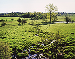 Dairy Pasture with Small Stream in Early Morning Light, Adirondack Park