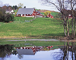 Red Barns with Reflections in Beaver Pond, Templeton Colony