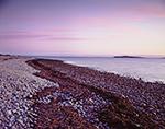 Predawn Light on Cobblestone Shoreline at Copicut Neck and Buzzards Bay, Cuttyhunk Island, Elizabeth Islands, Town of Gosnold, MA