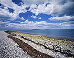 Cobblestone Shoreline on Copicut Neck and Buzzards Bay under Cumulus Clouds and Blue Skies, Cuttyhunk Island, Elizabeth Islands, Town of Gosnold, MA
