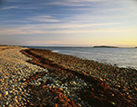 Early Morning Light on Cobblestone Shoreline at Copicut Neck and Buzzards Bay, Cuttyhunk Island, Elizabeth Islands, Town of Gosnold, MA