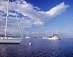 Boats in Cuttyhunk Pond under Blue Skies and Cumulus Clouds, Cuttyhunk Island, Elizabeth Islands, Town of Gosnold, MA