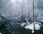 Oconaluftee River in Snowstorm, Great Smoky Mountains National Park, NC
