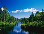 Northern Reach of the Hudson River with Evergreen Forest along Riverbank, High Peaks Area, Adirondack Park, Newcomb, NY