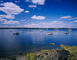 Boats at Moorings in Casco Bay, View from Shoreline of Cousins Island Yarmouth, ME